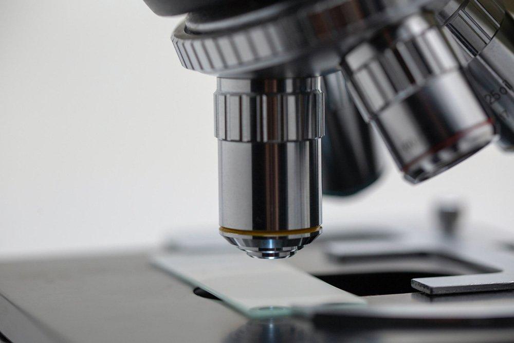 Microscoop - Michael Longmire via Unsplash