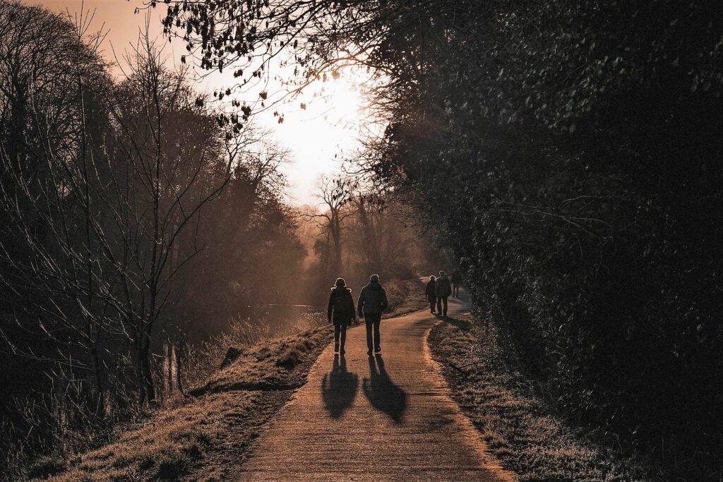 Wandeling - Nick Kane via Unsplash