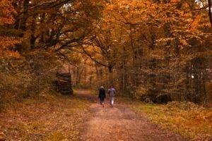 wandelen - Hannah Reding via Unsplash